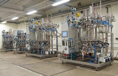 Biorreactores de producción
